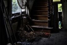 Decay / by Katt Of Bees