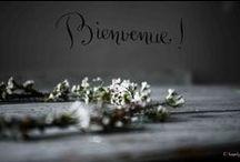 Jolis blogs / by ★ clαιrє ★ { De Beaux Souvenirs }