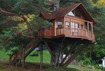 Treehouses.. . . my dream house / by Elish~~ no pin limits )O(