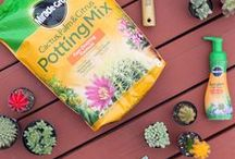 Grow Together - Gardening Tips To Inspire & Enrich Your Life / If your idea of happiness comes in plant form, then here are some wonderful gardening and home decor ideas for Spring. In partnership with Miracle-Gro to help you create the cutest and longest lasting garden projects that will help enrich your life!