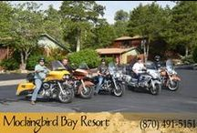 Adventure Awaits / Great outdoor places to visit while at Mockingbird Bay Resort, a rural tourism destination. Ozark Awesomeness!