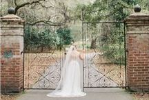 Legare Waring House Wedding / Legare Waring House weddings in Charleston, SC. Including wedding photos and bridal portraits at the avenue of oaks and historic home at this Charleston wedding venue.