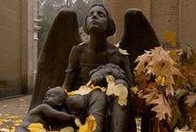guardian angels / by Sweetpeas & Silk