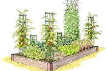 house plans | garden