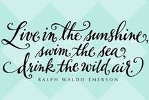 Words of Wisdom  / Quotes and phrases to put your mind on vacation