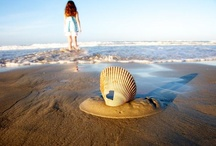 Outer Banks Photo Contest 2013 / These are photos from CCV photo contest winners - enjoy!