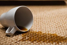Cleaning / (Deep-cleaning, Stain Removers, Etc.) / by Lindsay LaPorte