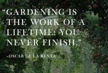 Garden Thoughts / by Star® Roses and Plants
