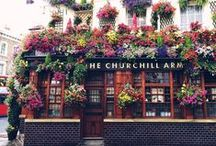The #SocietyGirl City Guide / Our Haunts & Other Hot Places to find #SocietyGirls.