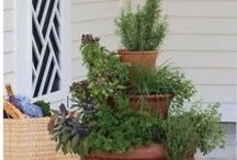 Herb Garden / Herb garden on the deck / by Sarah Rulseh