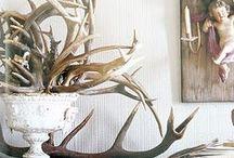~Antlers~