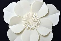 paper / Paper, paper and more paper! Papercutting, quilling, graphic design, craft, ideas...