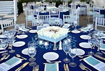 BLUE Wedding / by Laurieanne Dade City