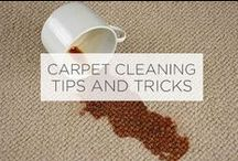 Carpet Cleaning: Tips & Tricks / Keeping a carpet clean can be tough- here are some tips, tricks, and DIY recipes for keeping your carpet clean.
