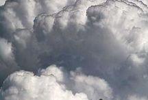 Cloud Watching / by Lancia Lee