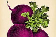 Farmsteaders - design inspiration / by Shaena Mallett