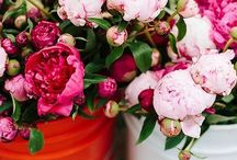 Floral love & outdoor inspiration