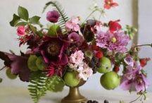Bouquets & Arrangements / by Amy Schauble