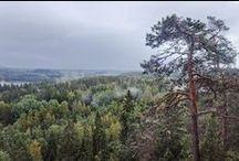 Aulanko collection / Versatile Aulanko - Pictures and activities across Aulanko in various seasons. Nature reserve, park, recreational area, hotel & spa, restaurants, cafes, camping area, golf cources,  historical buildings, statues etc. at Hämeenlinna, Finland #Aulanko #Hämeenlinna #VisitFinland