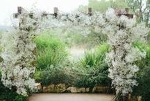 Baby's Breath / using baby's breath for your wedding decor