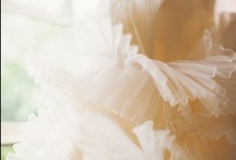 Ruffle / by abloom new york
