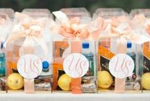 wedding welcome bags / ideas and themes for a welcome bag or favor for wedding guests