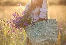 Fields / by abloom new york
