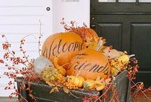 Fall / pumpkins, mums. sweaters and football. Isn't that what you think of fall?