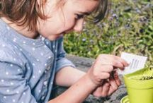 Kids Outdoor Activities for School Holidays & Class Projects