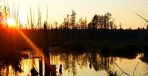 Outdoor Lifestyle / Outdoor Group Board: Camping, hiking, campfire cooking, paddling and other outdoors activities. Message to be added as a contributor.