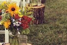 Wedding Ideas / by Alison Langelaan