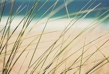 * surf / sun / sand / kesem boy * surf / sun / sand