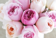 Love | Flowers