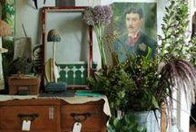 interiors x plants