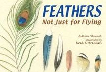 Feathers: Not Just for Flying / Teaching ideas and resources for using Feathers: Not Just for Flying in the classroom.
