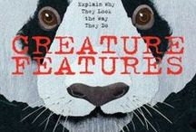 Nonfiction Mentor Texts / Some books I like and how they can be used as mentor texts during writer's workshop