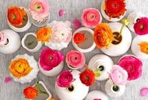 Flower arrangement & Co.