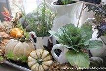 Fall and Harvest / by Linda Ellison