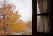That Fall Feeling