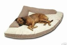 #Dog #products we like / by ForDogTrainers.com