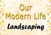 Landscaping Ideas / Our Modern Life - Landscaping Your Yard