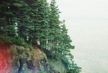 mountain heart / cabin / by jenny