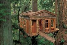 Tree Houses / by Cullen Rooney
