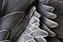 Color Inspiration: Grey