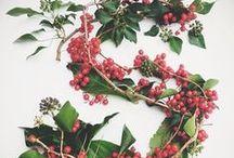 Seasonal Inspiration | Christmas / Christmas ideas, Christmas trees, Christmas wreaths Slamseys Christmas at www.slamseys.co.uk