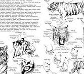 Zeichen Tuts Tiere