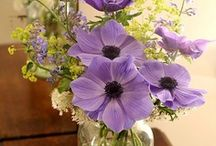 nature ♥ lovely ♥ flowers /  flowers in nature and in decoration and bouquets