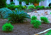 Diana's Designs -- My Landscaping Design and Installation Jobs / Creative landscaping design jobs and installations in every style. From contemporary to cottage to tropical, you can have any garden style you want, no matter where you live and garden.