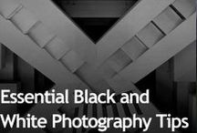 the art of black and white / articles, tutorials and examples of images that translate well to black and white. / by Dawn Shiree