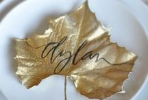 Give Thanks - Thanksgiving / thanksgiving decorations, thanksgiving recipes, thanksgiving appetizers, thanksgiving games, thanksgiving desserts, thanksgiving quotes, thanksgiving sides, thanksgiving centerpieces, diy thanksgiving decor, thanksgiving dinner table, thanksgiving casserole, thanksgiving party